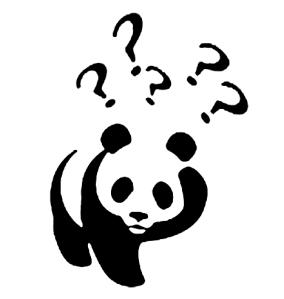 Panda, Confused