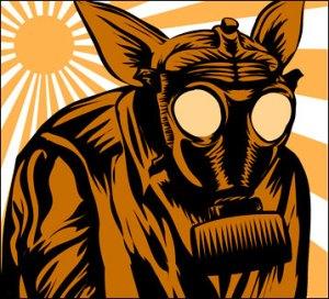 Pig, Masked